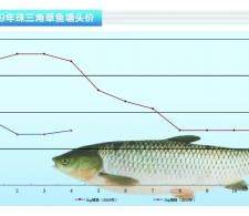 草鱼:触底反弹价略升——《水产前沿》2019年5月刊市场趋势
