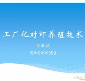 PPT分享之工厂化对虾养殖技术--孙继福