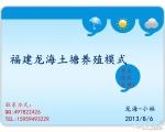福建漳州龙海-小林对虾养殖模式