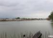湖北省咸宁市咸安区泉水湖渔场内水产品收益权整体处置
