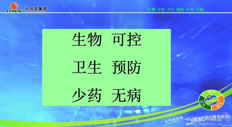 幻灯片13.JPG