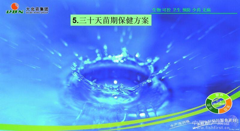 幻灯片95.JPG