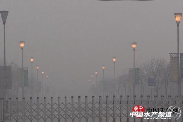 四川电视塔雾霾