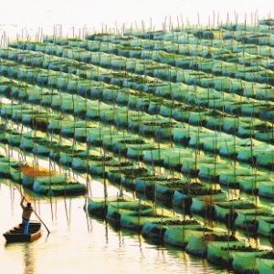 董双林:水产养殖生态学发展的回顾与展望