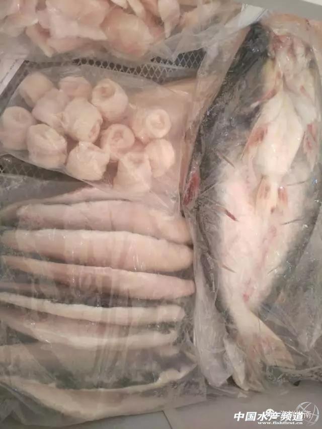 正关或边贸?巴沙鱼产业离规范化发展还有多远?