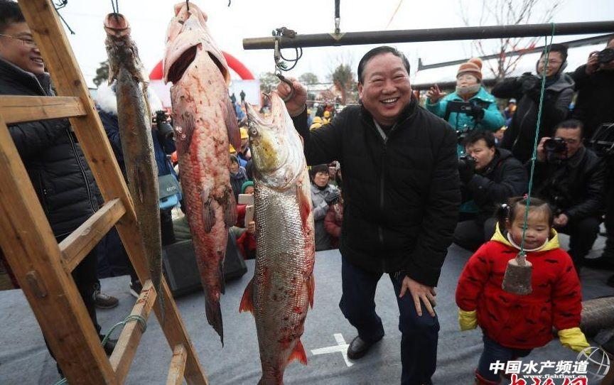 """江苏海安里下河冬季开捕""""鱼王""""要两人抬着走!"""