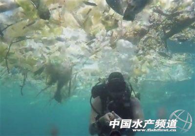 为什么巴厘岛海洋垃圾成灾?