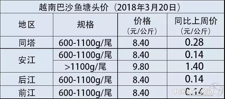 越南巴沙鱼价35000越南盾/公斤!中国养殖户不淡定了