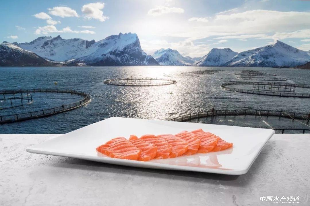 挪威海产局2018海产品消费动因调研报告