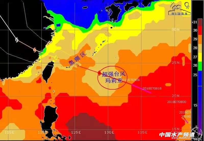 """""""西北太平洋及我国南海海域当前海温状况"""""""