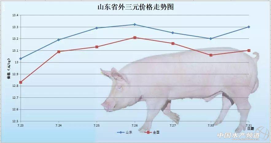 猪价是否又到新一轮涨价开始?——2018年7月31日外三元生猪价格及走势图