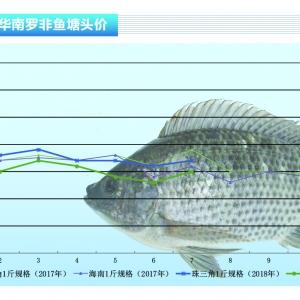 罗非鱼:大鱼存量减少 鱼价稳中有涨——《亚博足球官网前沿》2018年8月刊市场趋势
