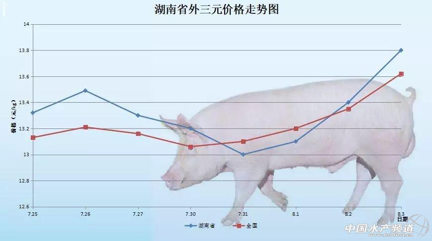 又涨啦!猪价一路飙升——2018年8月3日外三元生猪价格及走势图