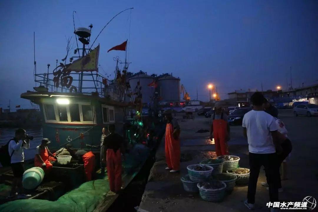 黄渤海沿岸城市特色海鲜图鉴!你最爱吃哪一款?