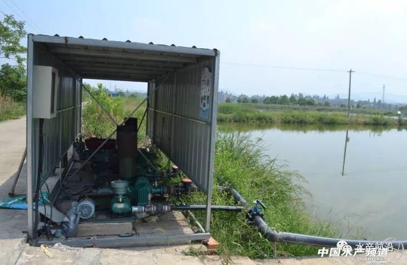 """而""""跑道养鱼""""的新模式能及时通过吸污水道的抽水机 广州水族资讯 祥龙鱼场"""