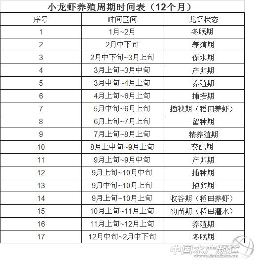 小龙虾的青青草网站与生长周期
