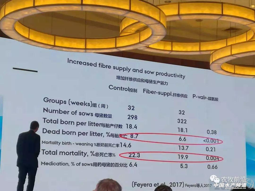 强烈推荐!丹麦高产哺乳母猪营养最新研究:双组分饲喂是未来发展方向