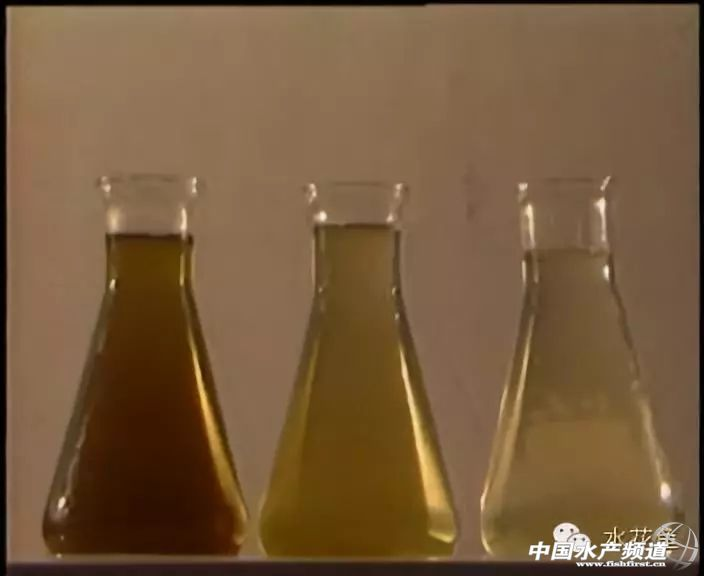 水体中有七个主要的水质指标,溶解氧最为重要