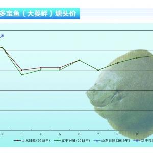 大菱(ling) (ping)︰1月(yue)份市場行(xing)情看好——《水產前(qian)沿》2019年1月(yue)刊(kan)市場趨(qu)勢