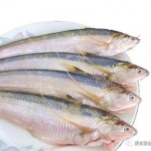 中国顶级的8种鱼,你吃过哪些?