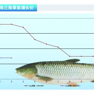 草魚︰魚販積極拉魚,價格反彈——《duan) chan)前(qian)沿》2019年4月刊(kan)市場趨勢