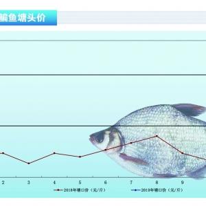 鳊鱼:有量无价,持续低迷——《365bet_365bet官网开户网址_365bet注册ribo88点cc前沿》2019年4月刊市场趋势