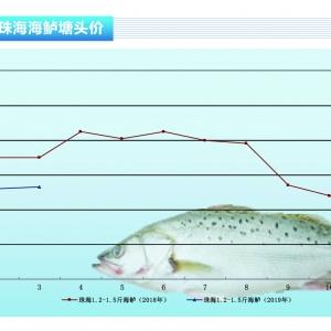 海鲈:现阶段市场走量小,价格或在禁渔期来临后上涨——《365bet_365bet官网开户网址_365bet注册ribo88点cc前沿》2019年4月刊市场趋 ...