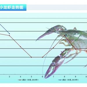 小龙虾:销量急剧下降,价格大幅上升——《365bet_365bet官网开户网址_365bet注册ribo88点cc前沿》2019年4月刊市场趋势