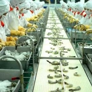 美国撤销31家越南公司的反倾销税率