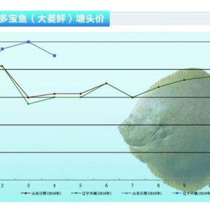 大菱(ling) (ping)︰超(chao)標魚缺貨,價(jia)格有望(wang)大幅上漲(zhang)——《水產前(qian)沿》2019年5月(yue)刊(kan)市場趨(qu)勢
