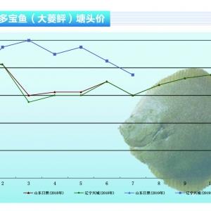 大菱(ling) (ping)︰市場消(xiao)費增加, 價(jia)格將小(xiao)幅上漲(zhang)——《水產前(qian)沿》2019年8月(yue)刊(kan)市場趨(qu)勢