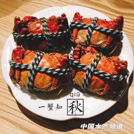 http://www.ddhaihao.com/tiyuhuodong/39765.html