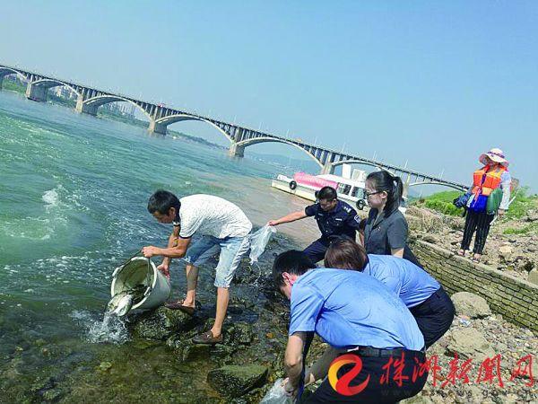http://www.cz-jr88.com/chalingluntan/168846.html