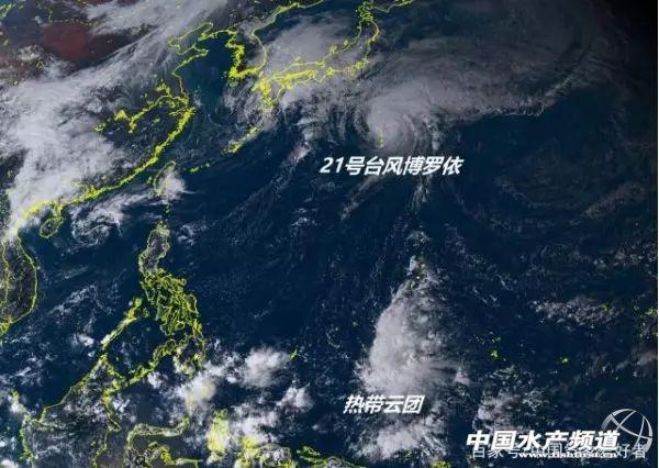 小心!台风还没结束!或携冷空气双双来袭