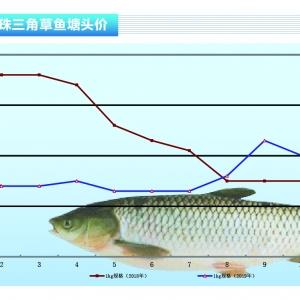 草魚︰消費疲軟行情(qing)平(ping)——《duan) chan)前(qian)沿》2019年12月刊(kan)市場趨勢