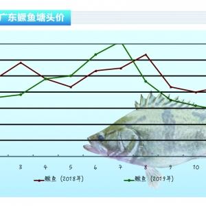 鱖(gui)魚︰養戶惜售 止跌回升(sheng)——《水產前沿》2020年1月刊(kan)市場趨勢