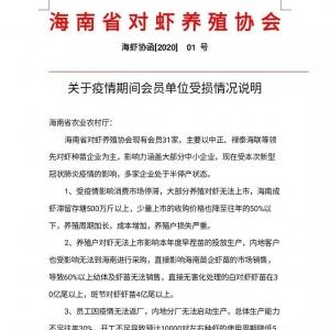 受疫情影響,海南蝦(xia)業損失嚴重