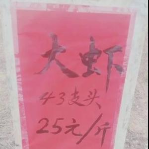 魚(yu)蝦賣(mai)不出!疫情之下,他們(men)怎麼自(zi)救?