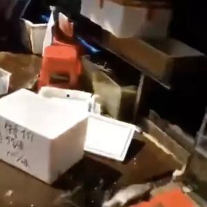勿傳謠!黃沙水產交易市場(chang)沒有封!網(wang)傳砸魚視頻檔主(zhu)︰當時是為砸暈魚冰凍