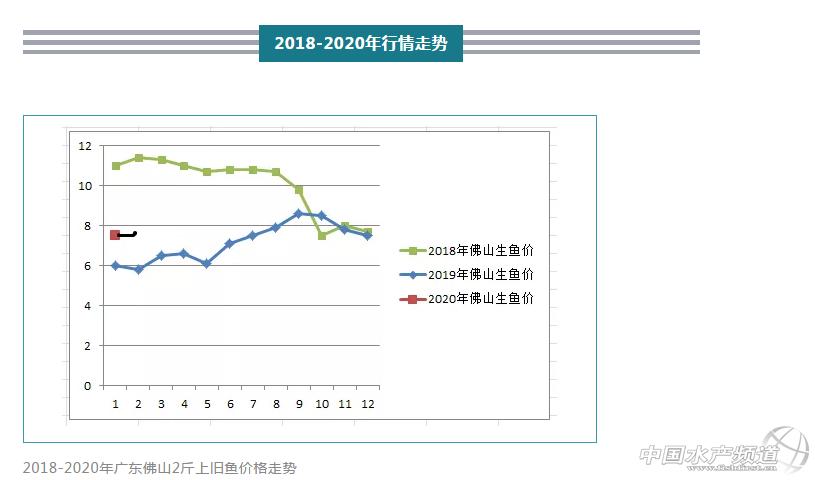 广东已涨价,生鱼将全面大涨?