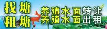 水产养殖池塘出租转让